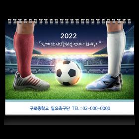 일요축구단(260x185)
